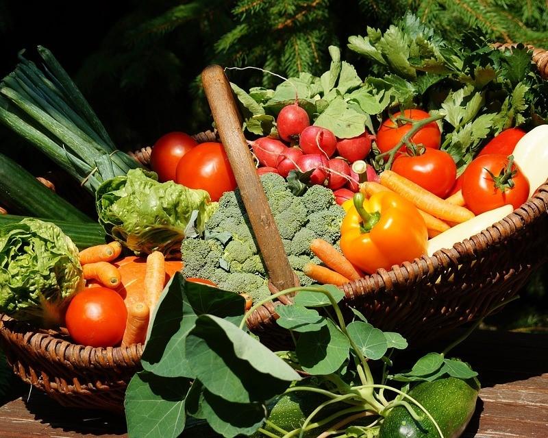 Verantsltungsbild - Mit meinem eigenen Gemüse durch das Jahr